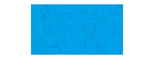 nsg-group-nippon-sheet-glass-logo-7D0B12AEEE-seeklogo.com.png